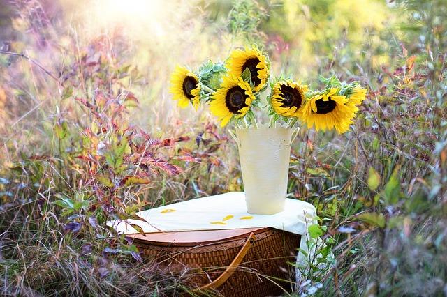bloemist Purmerend
